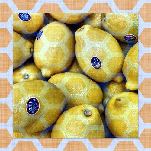 fruits and vegetables border. Lemons Honeycomb Border Yellow