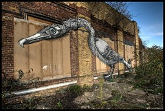 Roa - Inquisitive cormorant (Romany WG) Tags: street urban house bird london art birds animals graffiti fishing outsider contemporary diving east hoxton end cormorant cordy roa