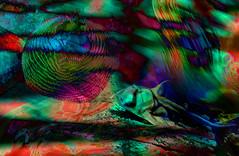 Fondo marino (seguicollar) Tags: imagencreativa photomanipulación art arte artecreativo artedigital virginiaseguí pez animalesmarinos color tecnicolor fondomar azul red bleu rojo verdegreen