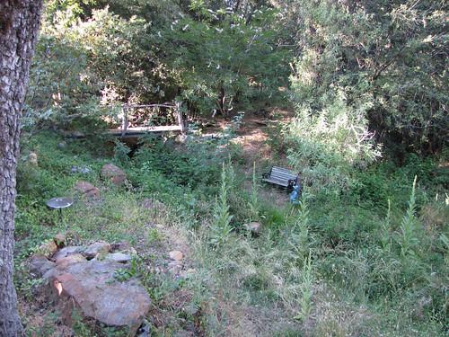 upper creek and bridge