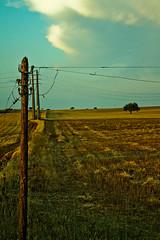 El tiempo... (InVa10) Tags: light sky españa tree luz portugal field clouds canon arbol eos oak spain poste pole badajoz cables cielo nubes electricity campo electricidad horizont horizonte encina inva 450d