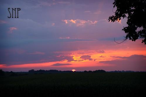 . august sunrise .