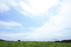 IMG_2238 (Ryohei_M) Tags: summer canon canoneoskissx2