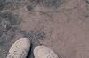(Syka Lê Vy) Tags: film 35mm vietnam vy canonae1 dreamer 2009 sleepwalker lê syka vắng fujifilmsp3000 damiroli fromsykawithlove howmanysummerswilliwait sykalevy lehoangvy sundayspirit