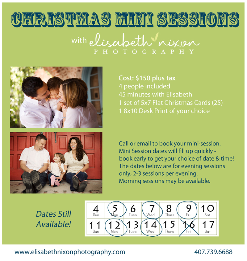 Christmas Information - Mini Sessions-web