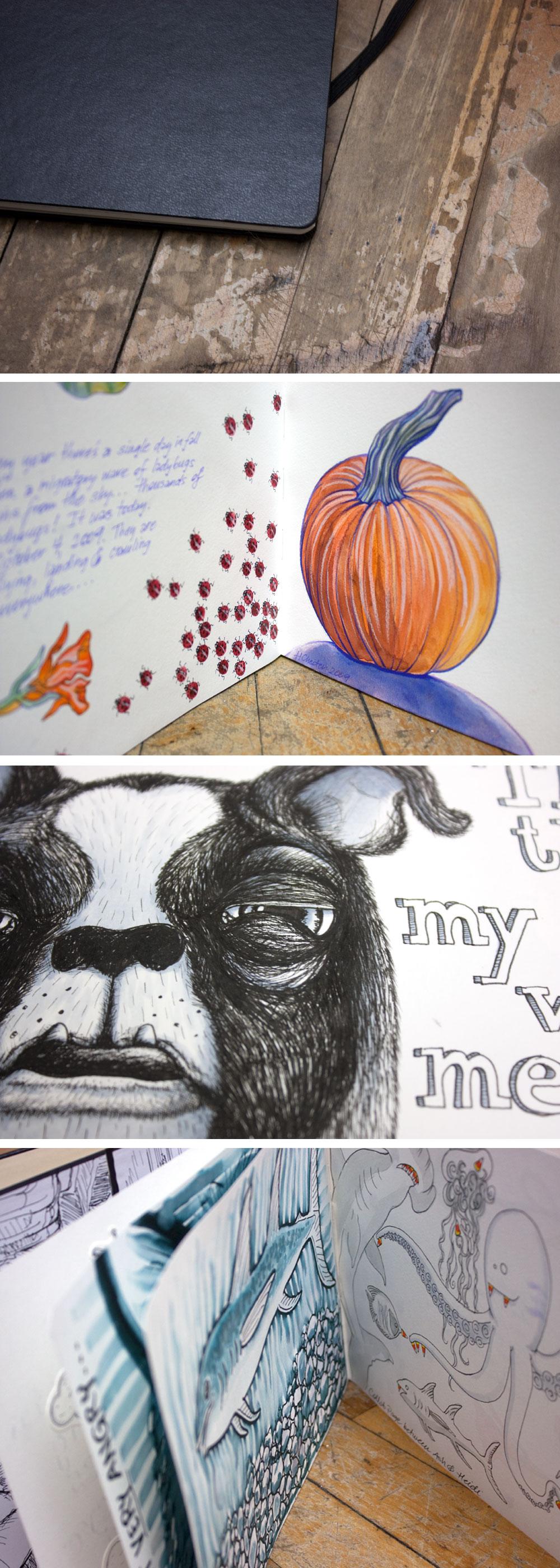 Ashe's-sketchbook