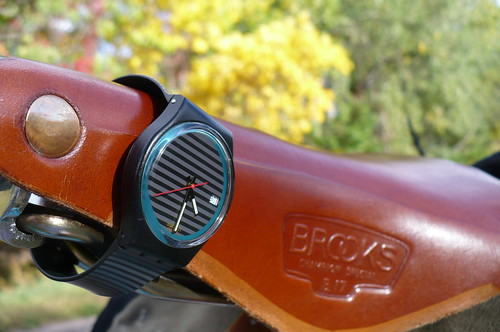 Swatch Brooks