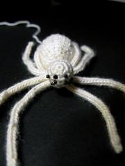 cashmere spider 3