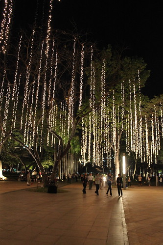 At the Ayala Triangle Gardens 1