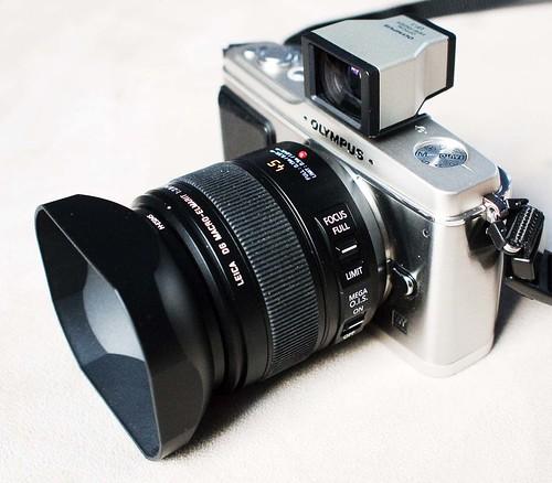 e-p1 + Panasonic Leica DG Macro Elmarit 45mm f/2.8 ASPH