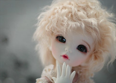 120312 (cute-bee) Tags: doll bjd fairyland ante littlefee