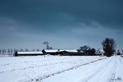 New snow is comming (BraCom (Bram)) Tags: road winter white snow clouds landscape shower slick farm sneeuw wolken wit bui weg landschap boerderij goereeoverflakkee spiegelglad bracom
