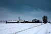 New snow is comming (BraCom (Bram)) Tags: road winter white snow clouds landscape shower slick farm sneeuw wolken wit bui weg landschap boerderij goereeoverflakkee spiegelglad bracom bramvanbroekhoven