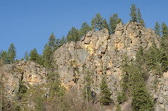 Pine coated cliffs! (Herringbone2) Tags: cliffs pinetrees palebluesky