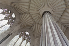 Fan Vaulting (CarolynEaton) Tags: wells cathedral chapterhouse fanvaulting
