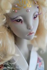 Golden Hydrangea (Iituheika) Tags: yerba lillycat lyse sd sd16 bjd doll cerisedolls
