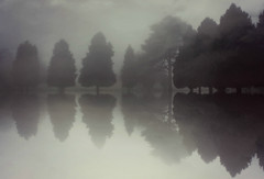On reflection (Suzanne takes you down) Tags: reflection river trees foggy