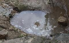 Pozzanghera carpinese (MediTabOnda) Tags: reflection italia reflejo acqua puglia lampione riflesso gargano pozzanghera carpino acquazzone
