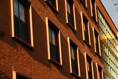 Morning orange (quinn.anya) Tags: windows orange yellow dorm universityofchicago dormitory maxpalevsky