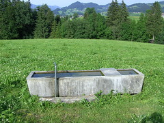 kontrast (skorpionin4) Tags: austria schwarzenberg vorarlberg bregenzerwald