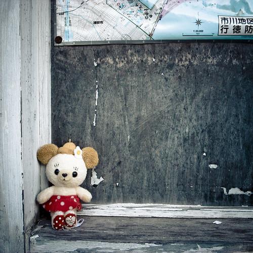 Lost Girl Teddy Bear, Ichikawa