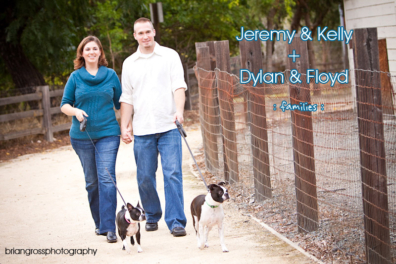 brian gross photography Intro_image