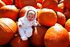 Picking out a pumpkin (dbabichenko) Tags: pumpkin firsthalloween mybeautifuldaughter