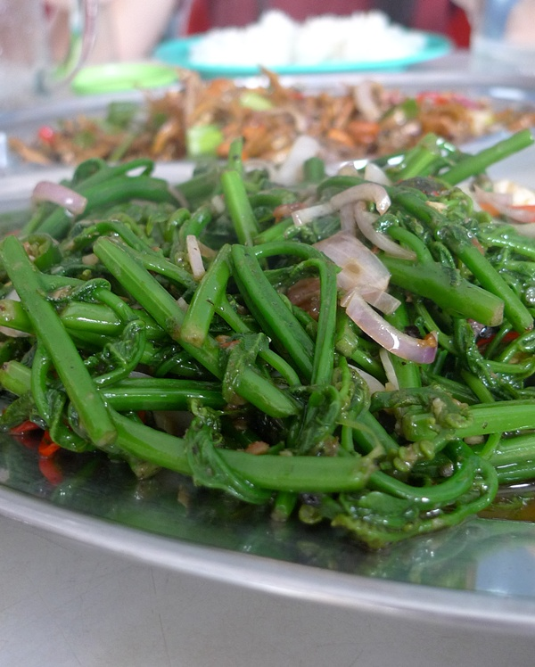 Fern with Sambal Belacan