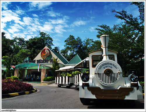 Lok Kawi Wildlife Park - Zoo Train