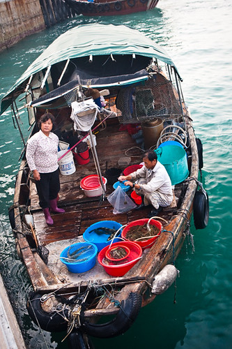 Aberdeen Fish Sellers in a Sampon Hong Kong