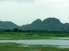 thirukurankudi kulam (wilsonepaul) Tags: india lake wings picnic tour tirunelveli malai tamil tamilnadu southindia kulam vallioor secnery nellai nambimalai wilsonepaul