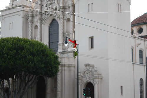Mistletoe at 16th and Dolores