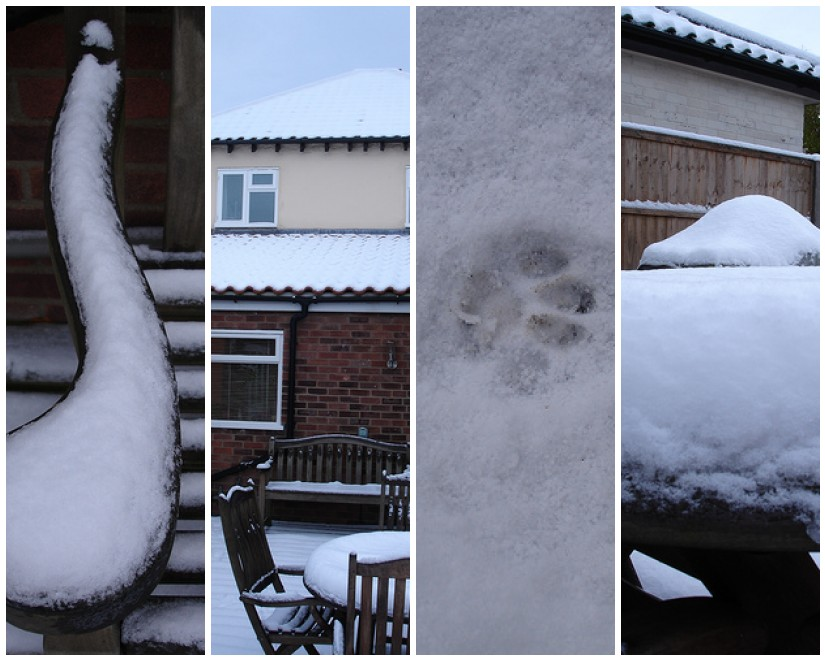 Snowy December days
