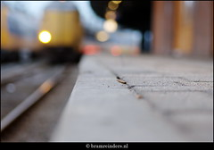 One moment at the station (Bram Reinders(on-off)) Tags: holland train bokeh nederland thenetherlands trainstation groningen trein appingedam treinstation tamron90f28 scherpte stationgroningen standpunt sonyalpha700 bramreinders travelsofhomerodyssey ©bramreindersappingedam wwwbramreindersnl dieptte