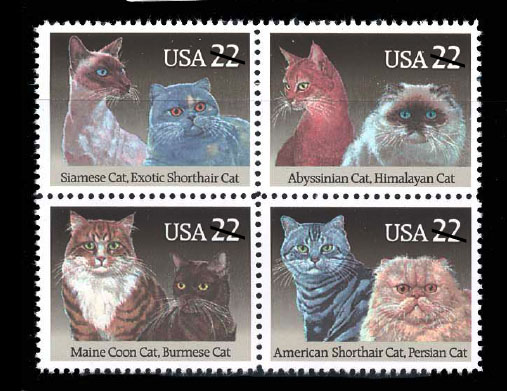jc cat stamp
