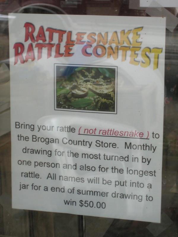 Rattlesnake Contest
