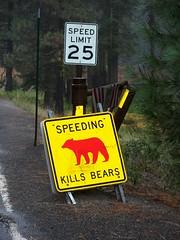 Yosemite_Oct2010_211