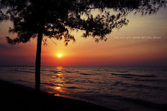 the sun will never let you down (khaniv13) Tags: light sunset sea sun reflection tree beach pine indonesia golden nikon dusk horizon wave jawatengah pemalang d40x khaniv13 widuribeach