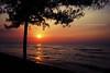 the sun will never let you down (khaniv13) Tags: light sunset sea sun reflection tree beach pine indonesia golden nikon dusk horizon wave jawatengah pemalang d40x khaniv13 widuribeach