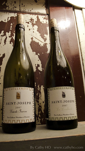 2007 Yves Cuilleron Saint-Joseph Blanc