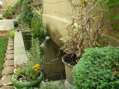 Pond (boisebluebird) Tags: flowers summer plants garden landscape design pond boise patio waterscape garening michaeltoolson boisebluebirdcom httpwwwboisebluebirdcom boiselandscaping boisegardener