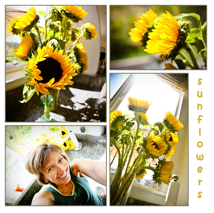 dumpster sunflowers