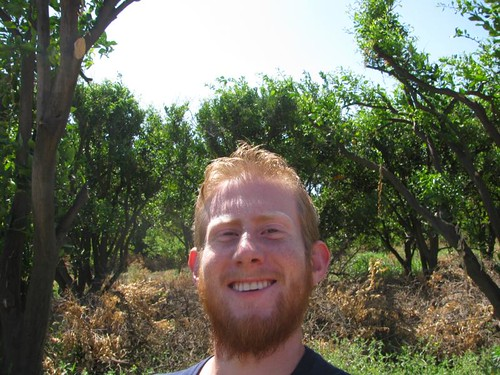 me in an Orange grove