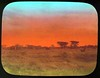 Sunset view (The Field Museum Library) Tags: africa sunset red expedition landscape mammals somalia zoology 1896 carlakeley specimencollection dgelliot woqooyigalbeed