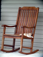 why do cats love to rock? (frankieleon) Tags: wood pet cat interestingness interesting chair kitten bestof seat lounge kitty front cc porch creativecommons resting rockingchair popular chillout frankieleon