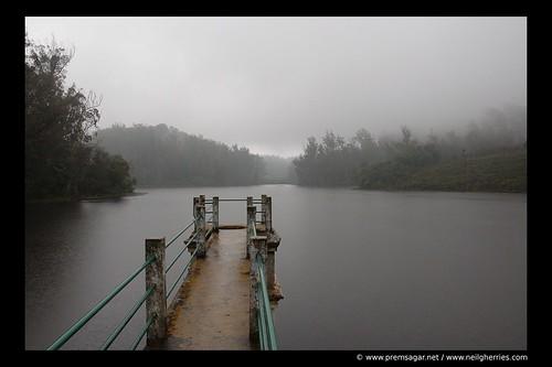 Marlimund lake in rain (Ooty, Nilgiris)