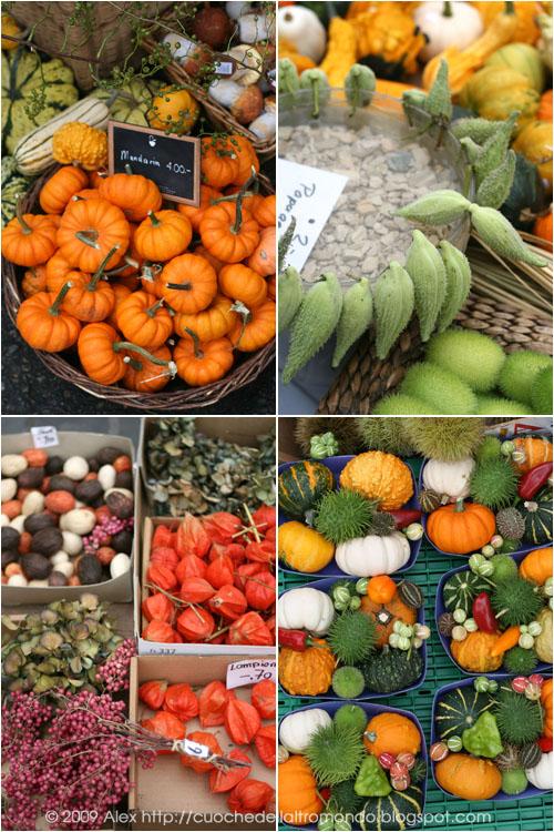 Zucche e colori autunnali