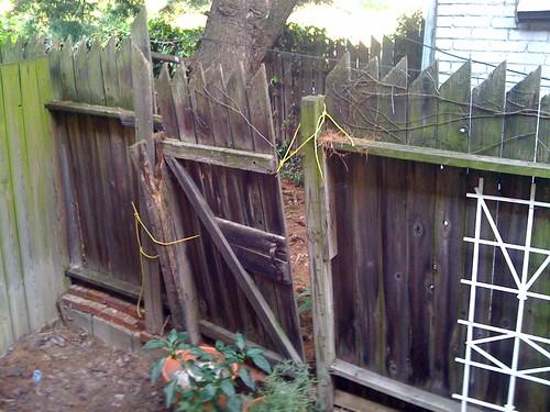 Popville 187 Dear Pop Do Bad Fences Make Bad Neighbors