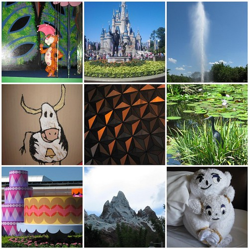 Trip to Disney in 9 photos