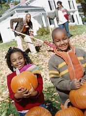 Fall - Family C